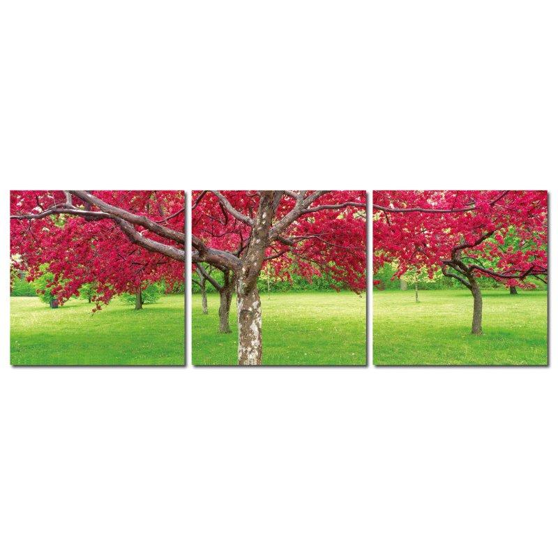 wandbild 3er set rot bl hende b ume auf gr ner wiese fotografie bilde 39 90. Black Bedroom Furniture Sets. Home Design Ideas